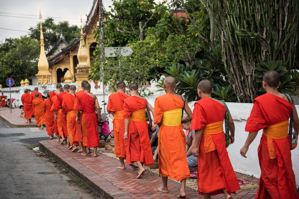 saffron robes monks in luang prabang laos